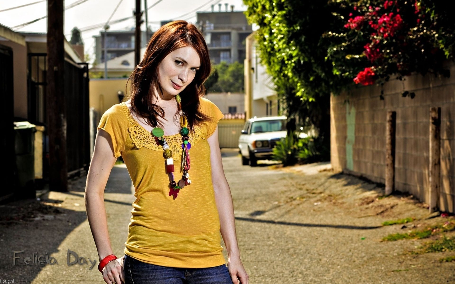 Felicia Day Cosplay